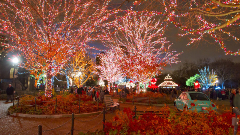 Christmas Things To Do In Chicago.11 Best Things To Do In Chicago In December 2015 Mommy Nearest