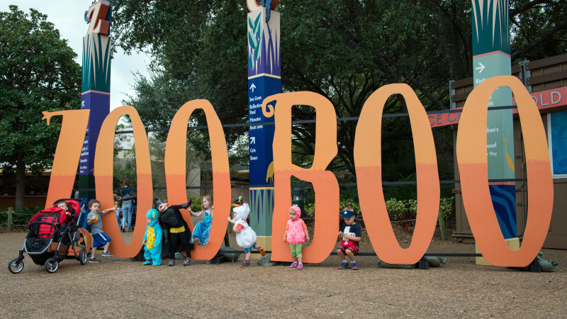 Image for 15 Reasons We Are Excited For Fall In Houston article