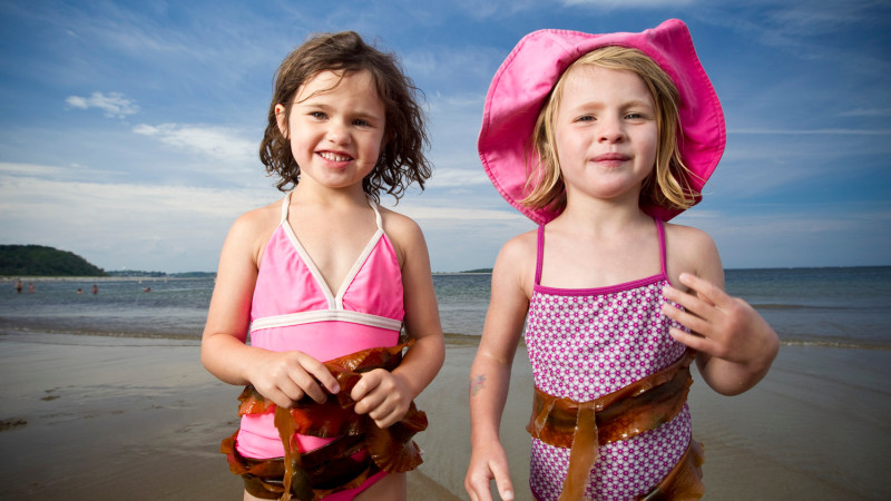 Image For 5 Best Things To Do In Ipswich Ma With Kids Article