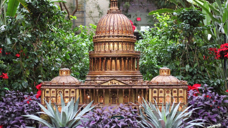 Image For Family Guide To The United States Botanic Garden In D.C. Article
