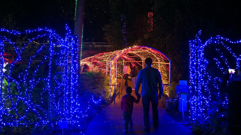 Holiday Light Show Returns To Atlanta Botanical Garden Mommy Nearest