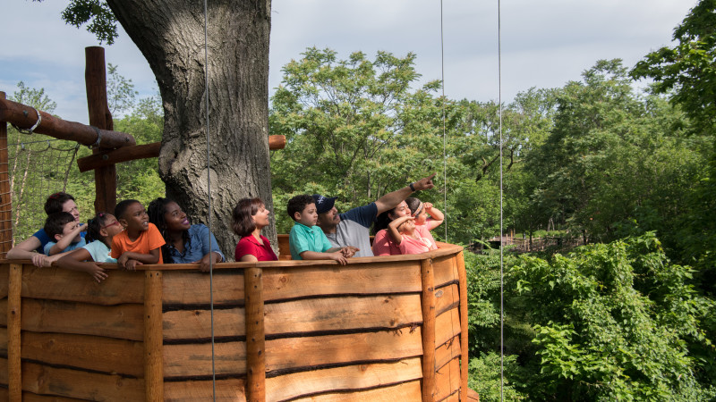 Bronx Zoo Adds New Nature Trek Exhibit And Play Area For Kids
