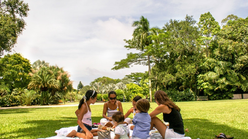 Best Things to Do at Fairchild Tropical Botanic Garden - Mommy Nearest