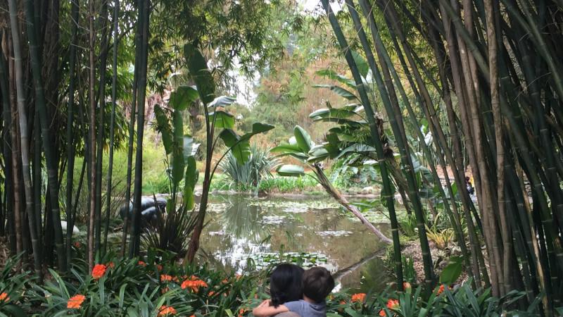 Must Do Huntington Botanical Gardens In San Marino Ca Mommy Nearest