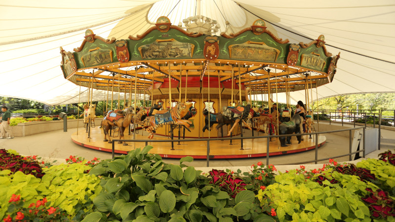 The Ultimate Guide to Carousels in Chicago - Mmy Nearest