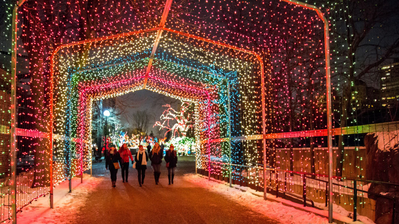 Image for Best Places to See Holiday Lights in Chicago article - Best Places To See Holiday Lights In Chicago - Mommy Nearest
