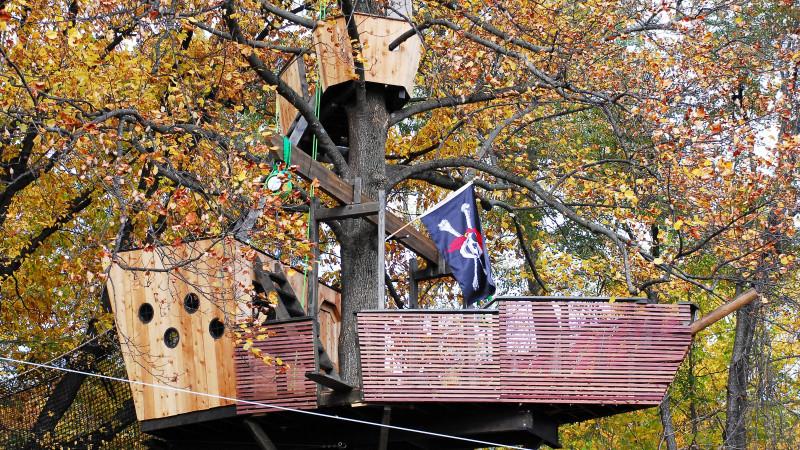 5 Places Kids Can Explore Tree Houses In Philadelphia Mommy Nearest
