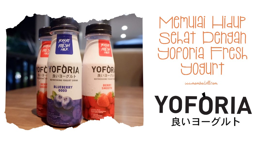 Yoforia Fresh Yogurt Live Probiotics