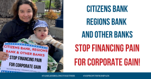 "<a href=""https://action.momsrising.org/cms/view_by_page_id/11675/?source=action"">Citizens Bank, Regions, First Tennessee Bank, Synovus Bank, Pinnacle Bank & other banks - Stop Financing Pain For Corporate Gain!</a>"