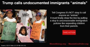 """<a href=""""https://action.momsrising.org/cms/view_by_page_id/7505/"""">It&#039;s not okay to call people &quot;animals.&quot; Congress must draw the line and stop family separation</a>"""
