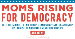 "<a href=""https://action.momsrising.org/cms/view_by_page_id/9744/"">CALL CONGRESS NOW: There is no national emergency!!</a>"