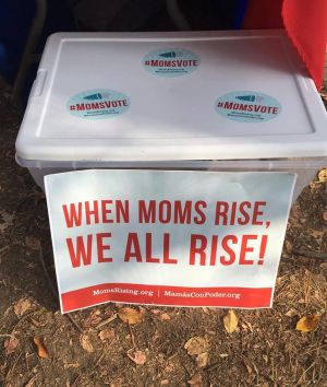"<a href=""https://action.momsrising.org/cms/view_by_page_id/12149/?source=action"">Super Voter Treasure Boxes  - Help Moms and Caregivers Vote in 2020! </a>"