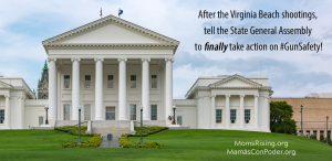"<a href=""https://action.momsrising.org/cms/view_by_page_id/10835/"">It's time for the Virginia GOP to take action on gun safety!</a>"