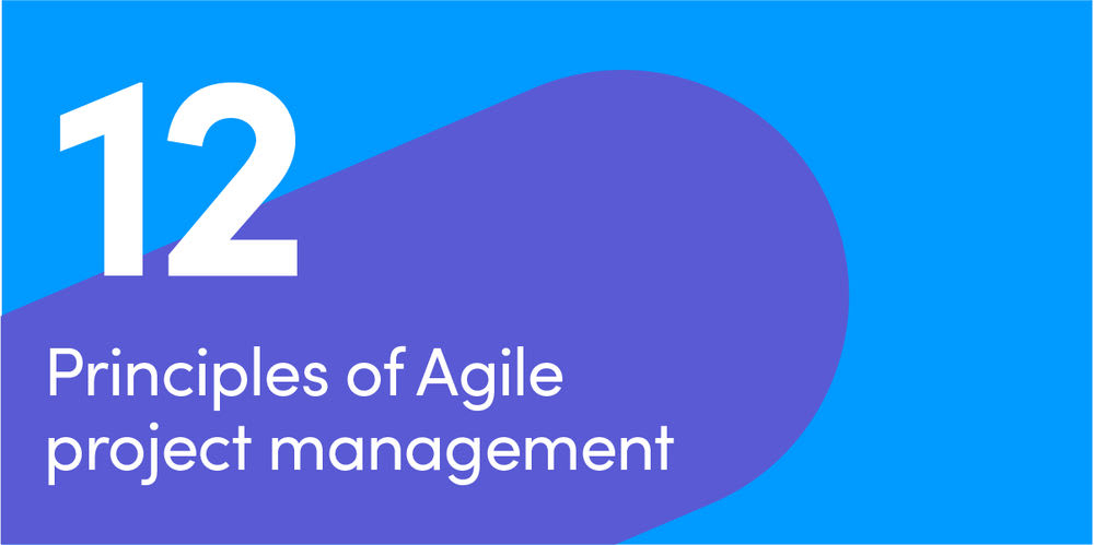 Principles of Agile PM