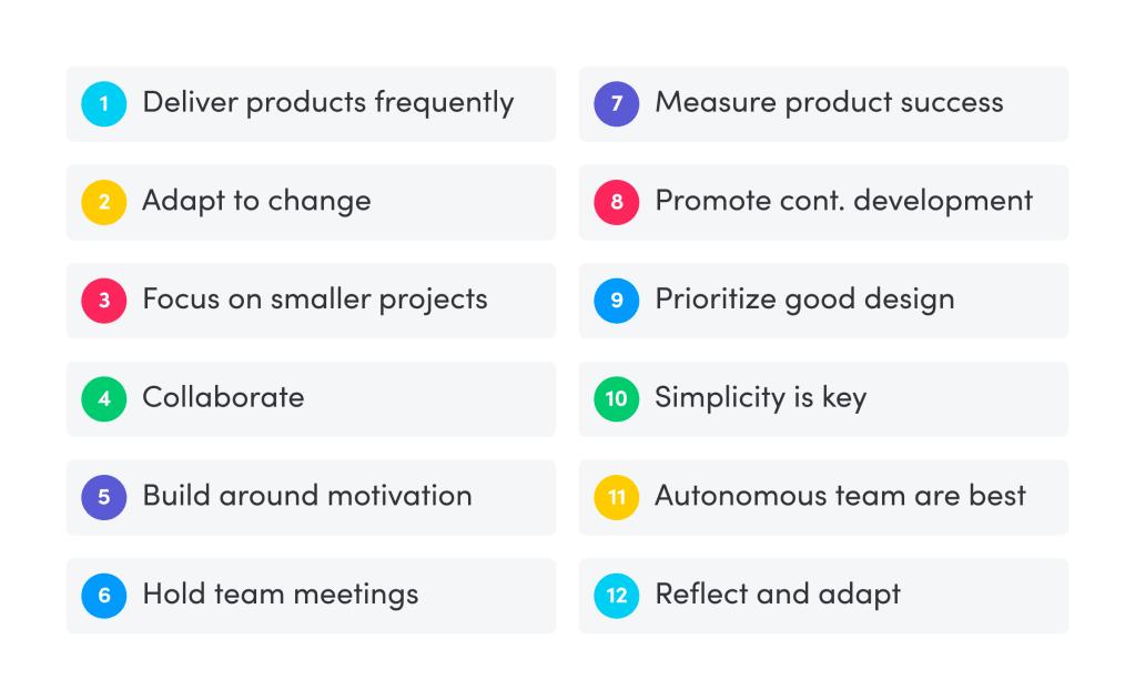 What the agile process looks like