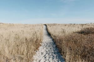 What is a critical path in project management?