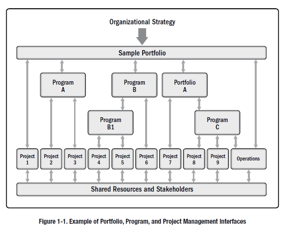 Screenshot from the 6th edition PMBOK guide illustrating OPM.