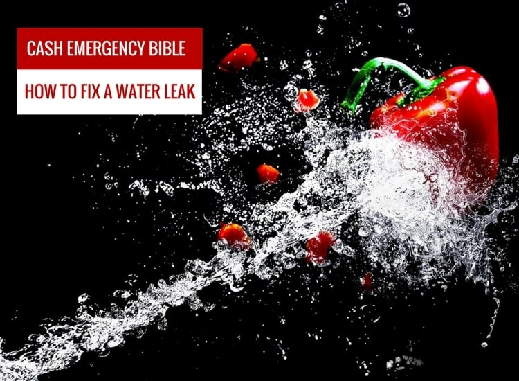 Cash Emergency Bible: How to Fix a water leak