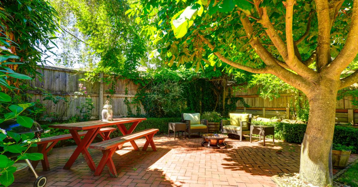 Backyard with shade