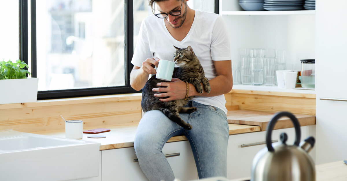 A man sits on the kitchen counter while holding his cat.
