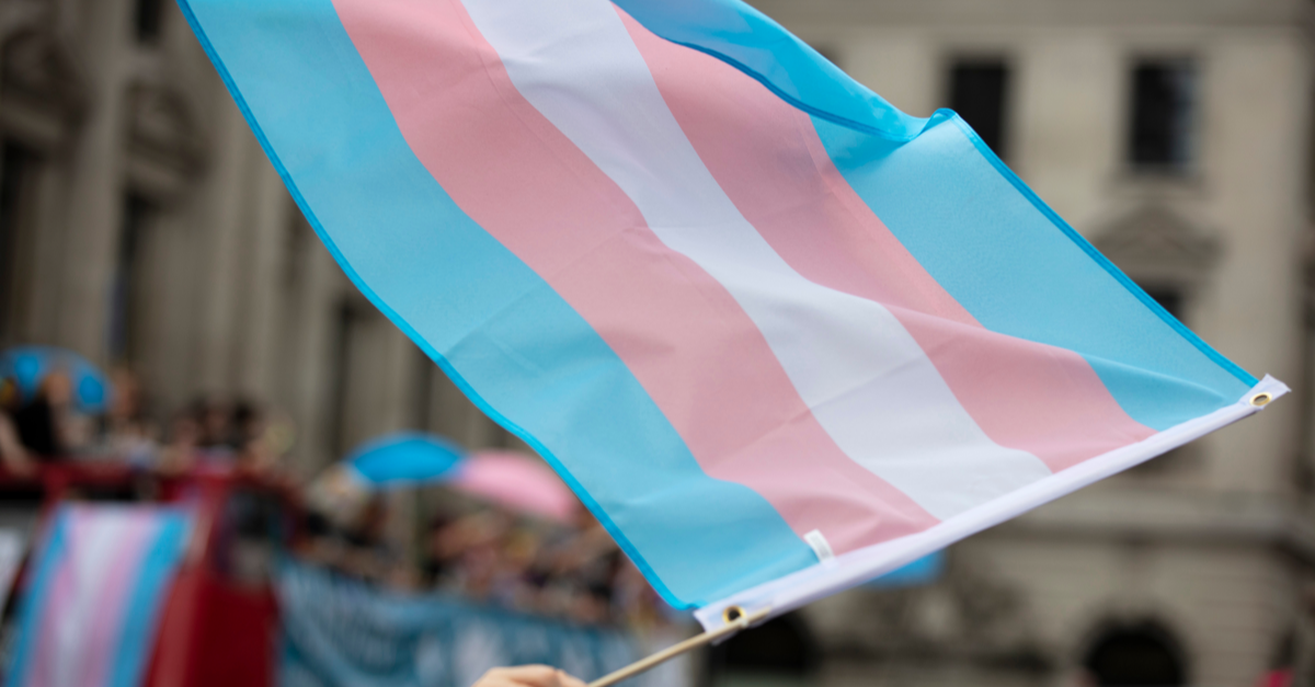 the pink, blue and white transgender flag is carried by a person