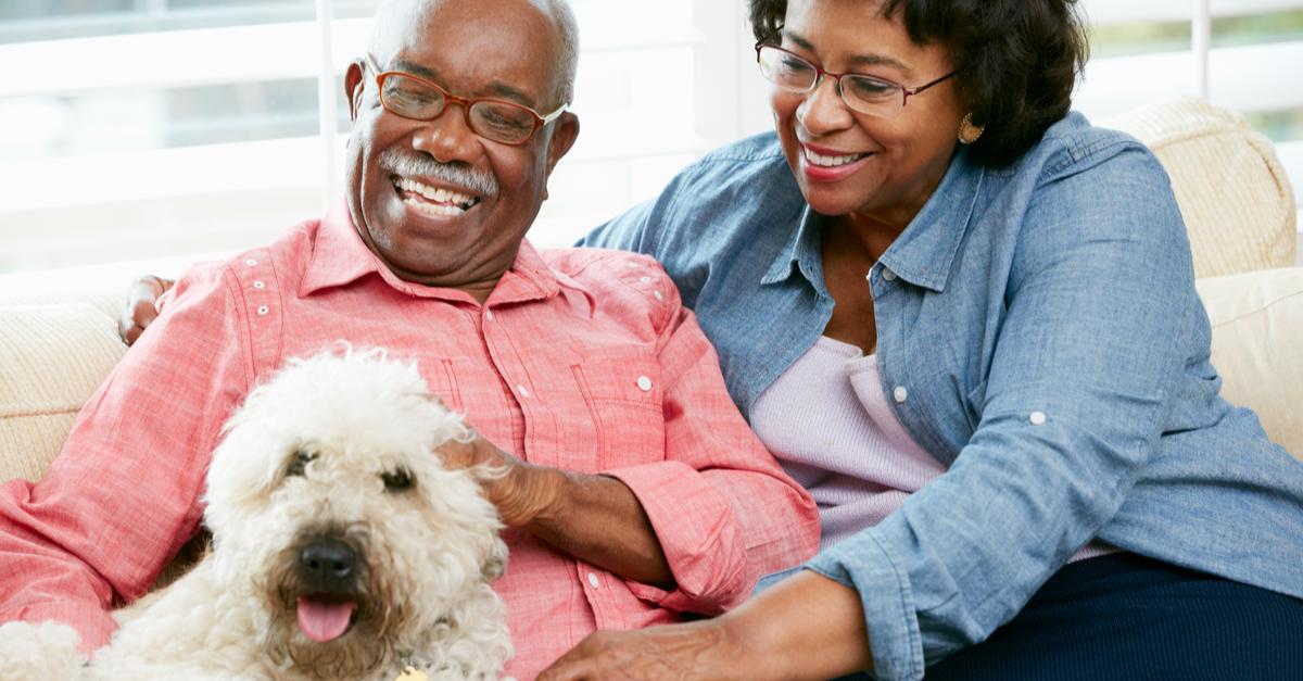 A senior couple enjoys time with their pet