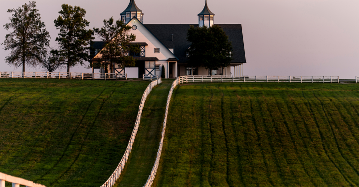 Manchester Farm, noted for its thoroughbred racehorses, Lexington, Kentucky