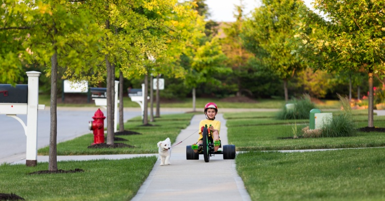 Young boy on a tricycle takes his dog on a walk around the neighborhood.