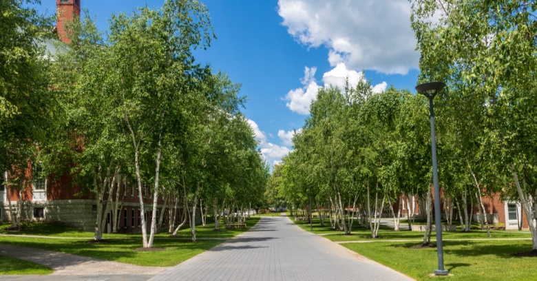 A tree-lined walkway on Bates College campus, located in Lewiston, Maine, the safest small city in the state.
