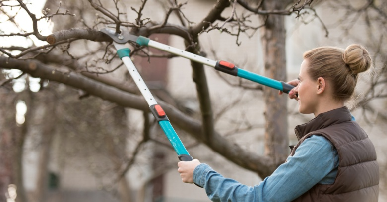 A woman trims the branches on a tree in her yard