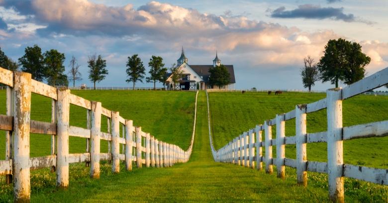 A horse farm in Kentucky.