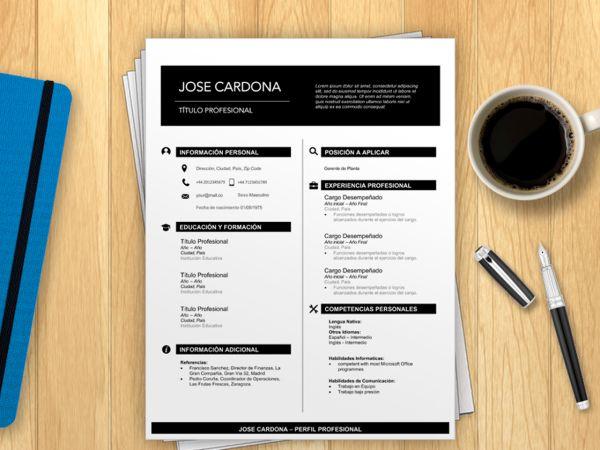 Curriculum Vitae para Rellenar Gratis   Curriculum Vitae Formato