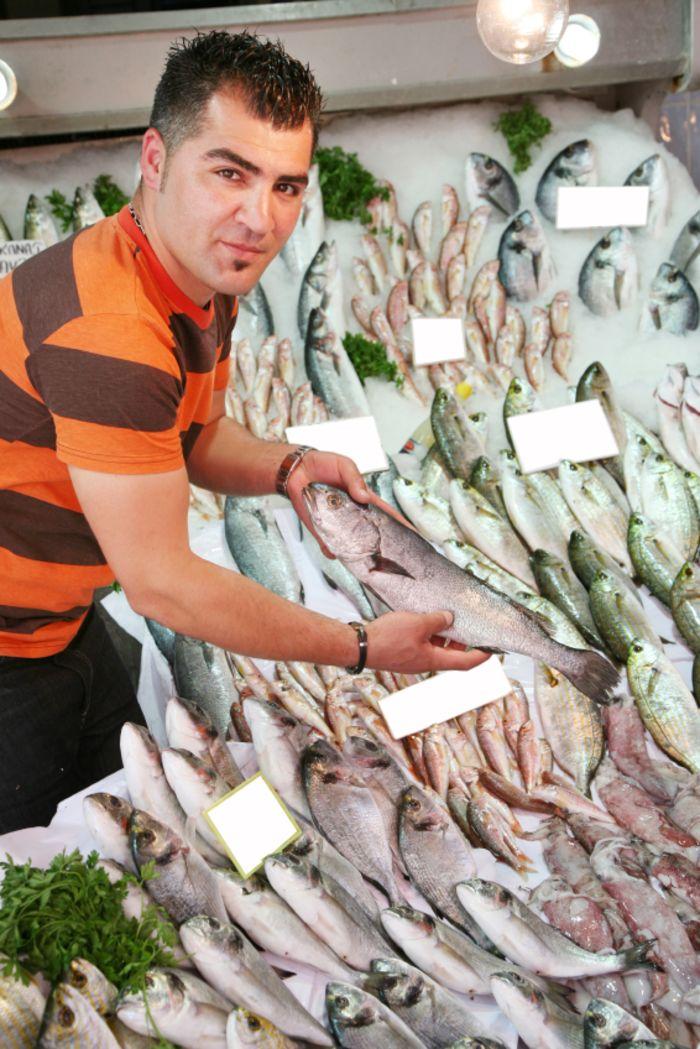 הקמת חנות דגים