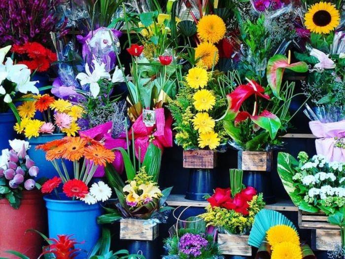 פתיחת חנות פרחים