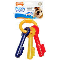 Nylabone Puppy Keys Teething Chew