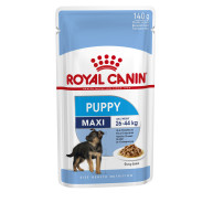 ROYAL CANIN Maxi Puppy Wet Dog Food Pouches in Gravy
