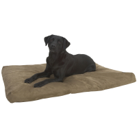 Buster Memory Foam Camel Dog Bed Medium