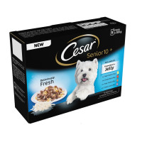 Cesar Pouch Senior 10+ Favourites in Jelly Adult Dog Food