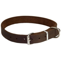 Earthbound Brown Leather Dog Collar Small