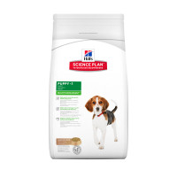 Hills Science Plan Puppy Healthy Development Lamb & Rice 12kg x 2
