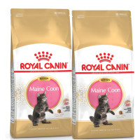 Royal Canin Breed Nutrition Maine Coon 36 Kitten Food