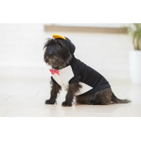 House of Paws Party Animal Penguin Dog Hoodie