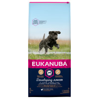 Eukanuba Developing Junior Chicken Large Breed Dog Food