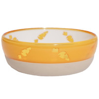Rosewood Translucent Carrot Bowl for Small Pets