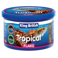 King British Tropical Flake Fish Food 28g