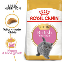 Royal Canin British Shorthair Kitten Dry Cat Food