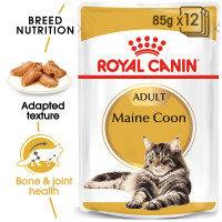Royal Canin Maine Coon in Gravy Adult Wet Cat Food 85g x 12