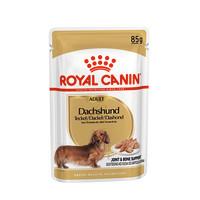 Royal Canin Dachshund Wet Adult Dog Food Pouches 85g x 12
