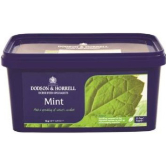 Dodson & Horrell Mint Supplement for Horses