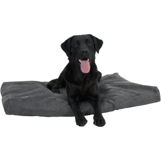 Buster Memory Foam Grey Dog Bed